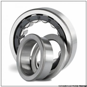 1.772 Inch   45 Millimeter x 2.953 Inch   75 Millimeter x 1.575 Inch   40 Millimeter  INA SL045009-PP-2NR  Cylindrical Roller Bearings