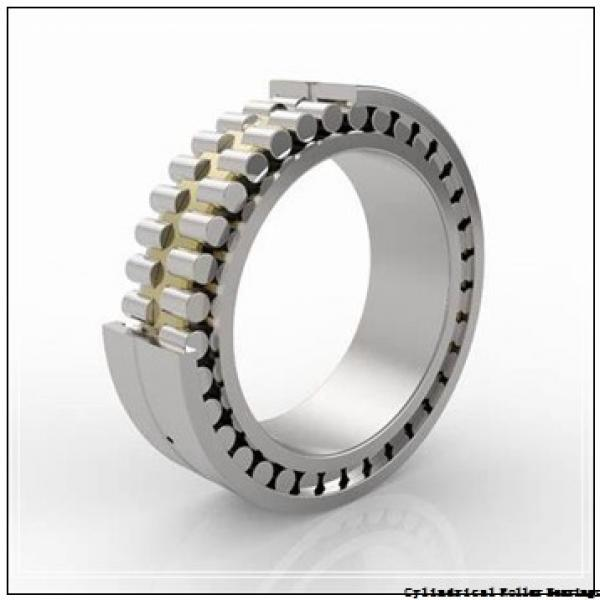 7.087 Inch   180 Millimeter x 9.843 Inch   250 Millimeter x 2.717 Inch   69 Millimeter  INA SL024936-C3  Cylindrical Roller Bearings #2 image